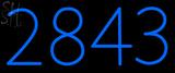Custom 2843 Neon Sign 1