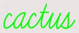 Custom Cactus Neon Sign 2