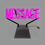 Custom Sculpture Neon Sign 1