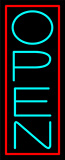 Pink Border With Aqua Vertical Open Neon Sign