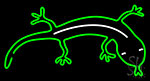 Gecko Neon Sign