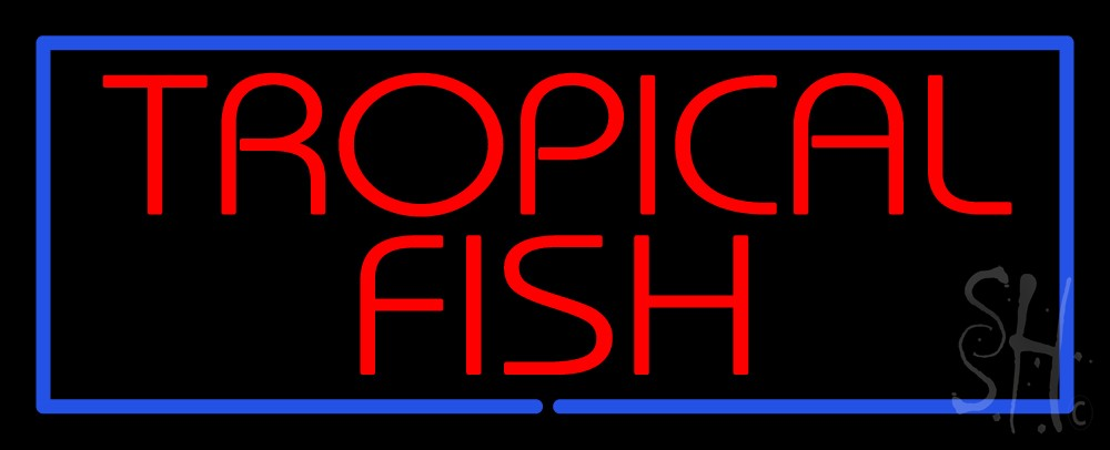 Tropical fish blue border neon sign trophical fish neon for Fish neon sign
