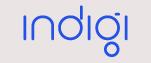 Custom Indigi Neon Sign 2