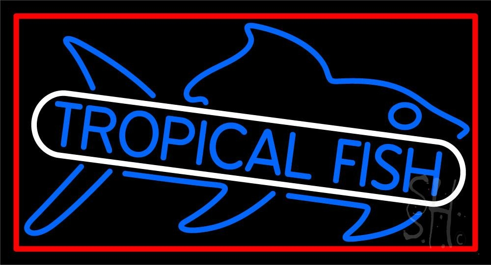 Tropical fish blue neon sign trophical fish neon signs for Fish neon sign